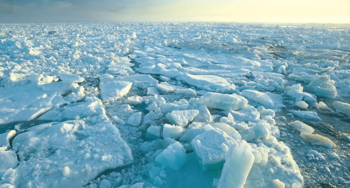 قارة أنتاركتيكا
